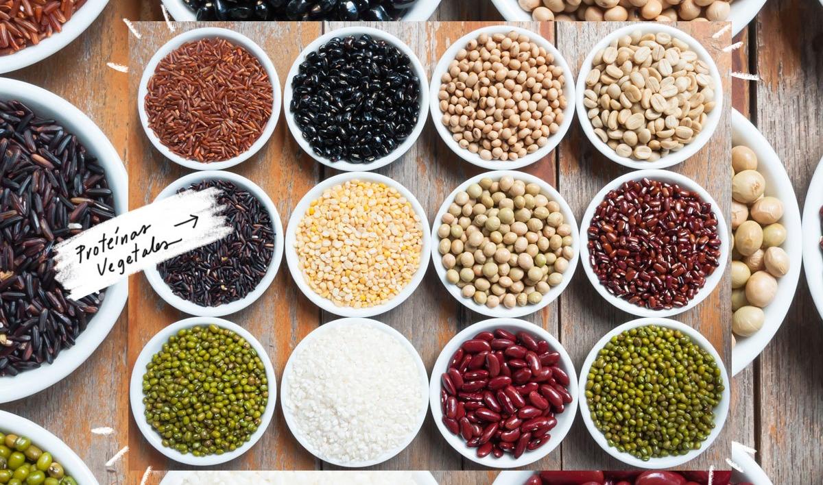 proteina-vegetal-destacada